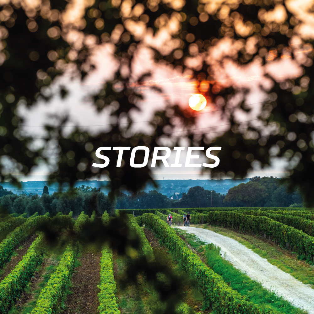 ROGELLI-DISCOVER-STORIES